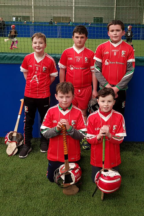 U12 Hurlers who participated in Sunday's Winter Blitz in Dundalk