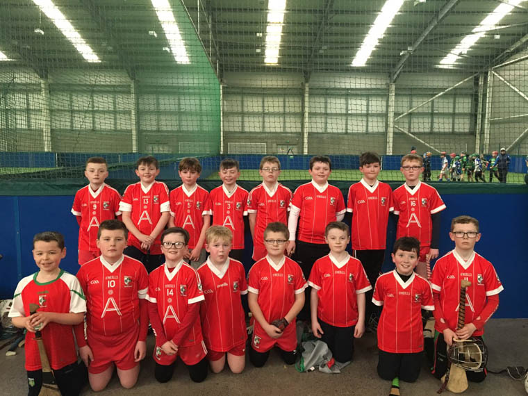 Craobh Rua Hurlers who participated in the recent Under 11 Blitz in Dundalk