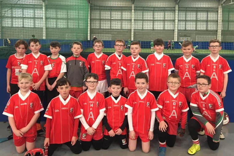 Craobh Rua Hurlers who attended the recent under 11 Hurling Blitz in Dundalk