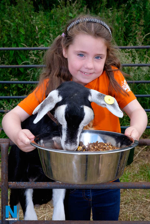 Newry ie - Newry Show this weekend - 20% off Admission with