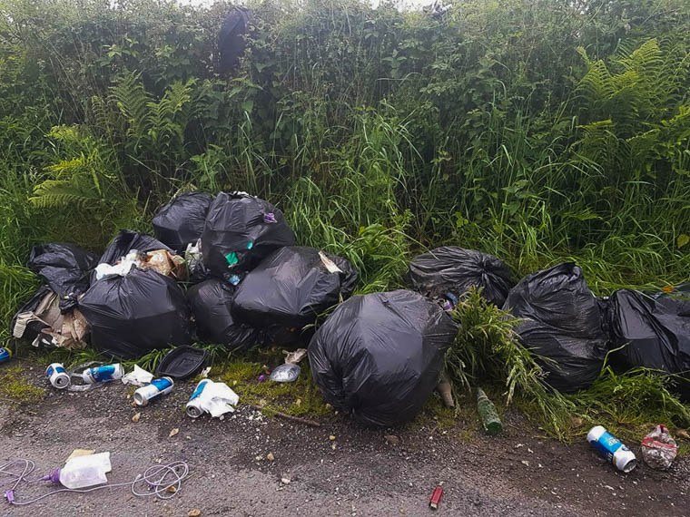 Bin bags dumped at the side of the road near Lough Ross.