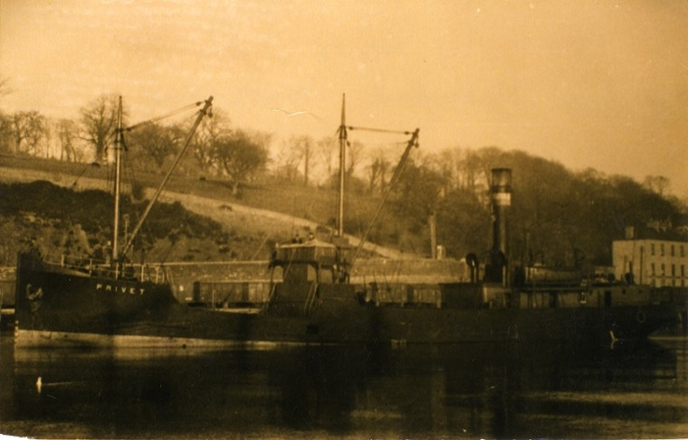The SS Privet which was completed on Clydebank in October 1936. Newry and Mourne Museum Collection