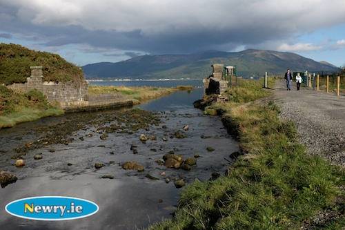 Beautiful scenery on the new Omeath Carlingford greenway. Photograph: Columba O'Hare